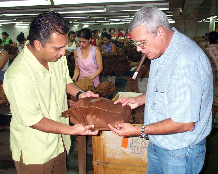 Inspecting tobacco on location